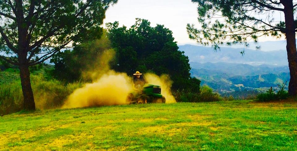 BUZZ GLASKY mowing Avatar's Point by Baba's Tree after a rainstorm brought new vegetation. (Photo: Ginger Glasky, 2015)