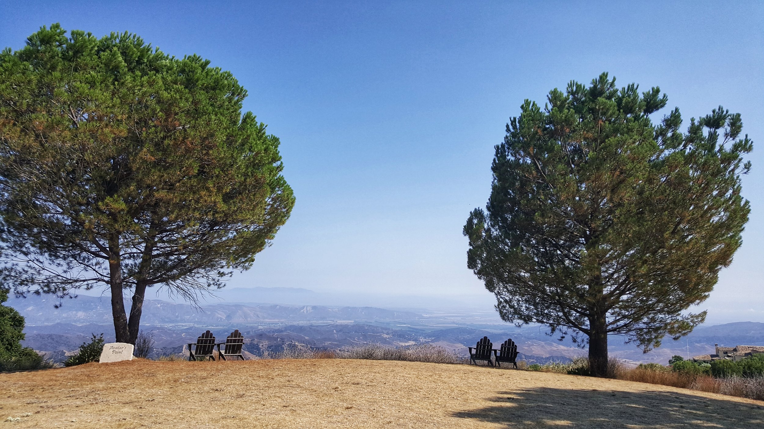 TWO OF THE PINE TREES at Avatar's Point in 2017  before  the Thomas Fire on December 4, 2017. The pine trees are still standing. The Avatar's Point sign is blackened.The two chairs on the left are completely gone, and the two chairs on the right are charred and burned. (Photo: Stephanie Ervin)