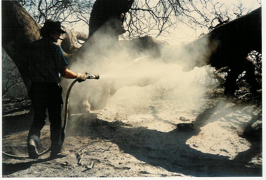 FIREMEN WERE STILL putting out the fire at Baba's Tree on October 19, 1985, five days after the New Life Fire burned all the structures and vehicles at Meher Mount. (Photo: Sam Ervin, October 19, 1985)
