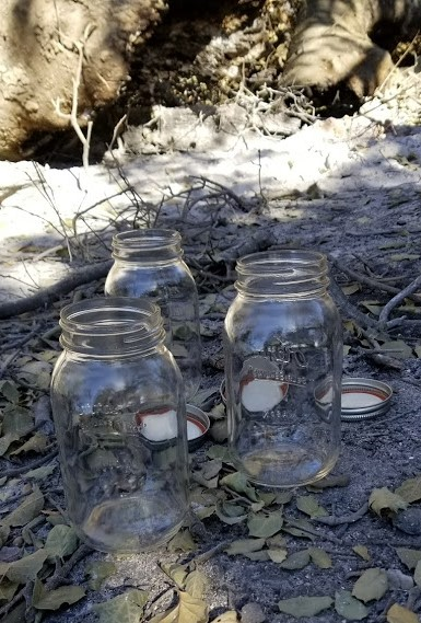 EMPTY JARS waiting for ash from Baba's Tree at Meher Mount. (Photo: Margaret Magnus)