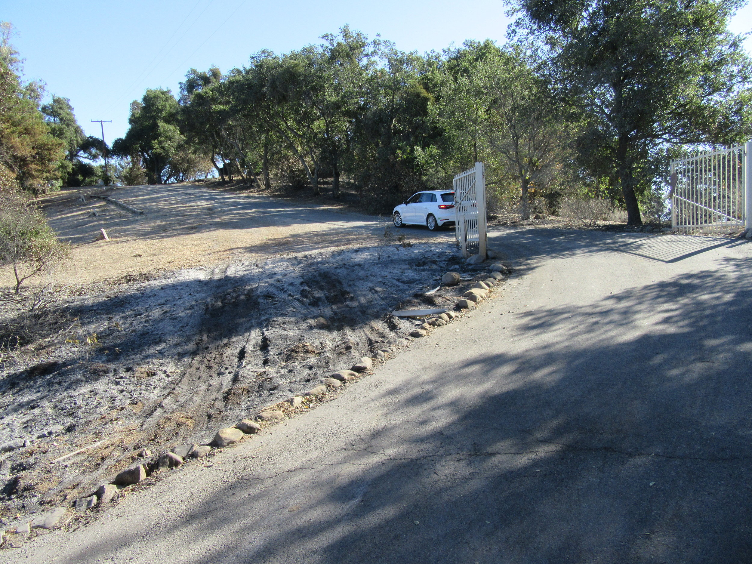 THE THOMAS FIRE left an opening - you can see the tire tracks on the left -where pedestrians and vehicles could bypass the closed gate and enter Meher Mount. (Photo: Sam Ervin, December 21, 2017)