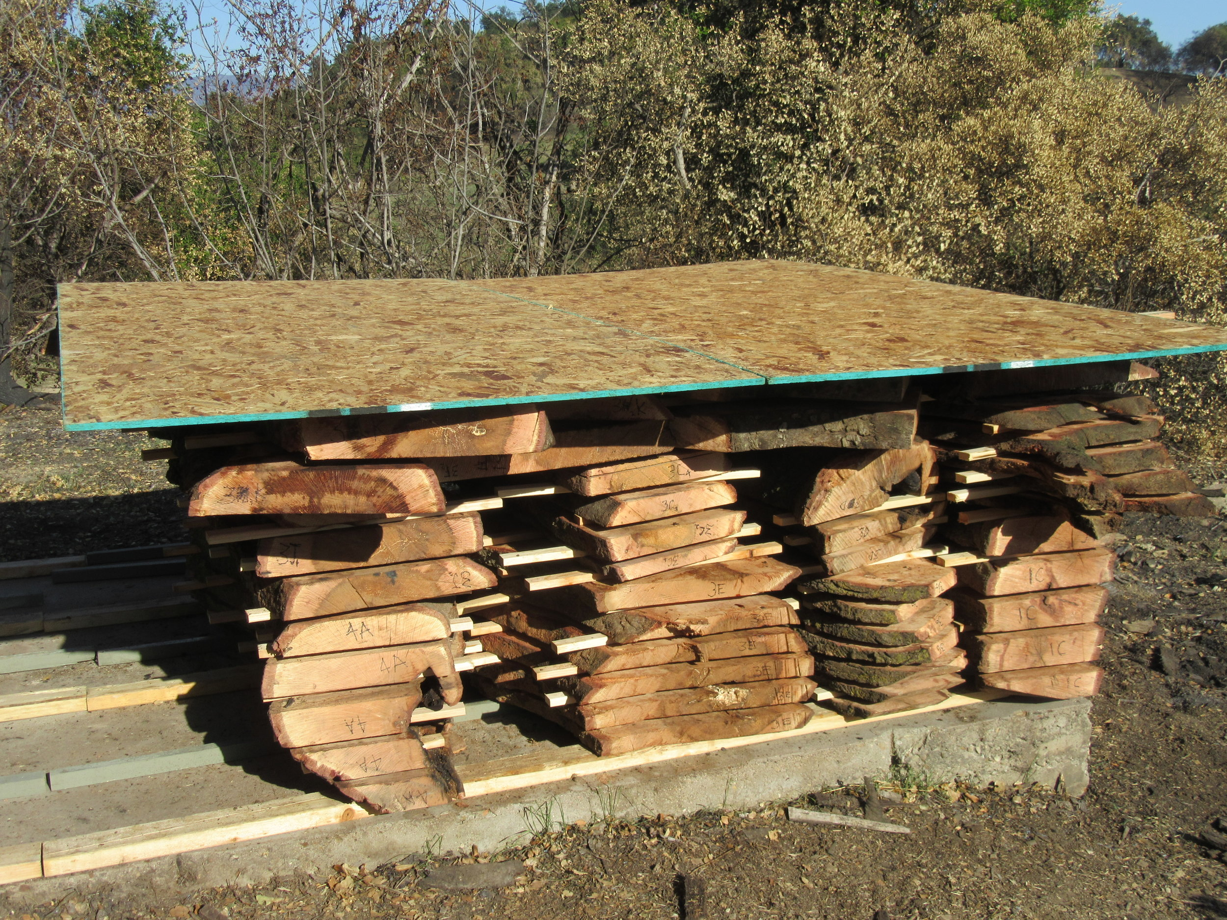 MILLED AND STACKED WOOD from Baba's Tree at Meher Mount. Each plank is tagged with a number that corresponds to its description in the inventory. (Photo: Sam Ervin, February 6, 2018)
