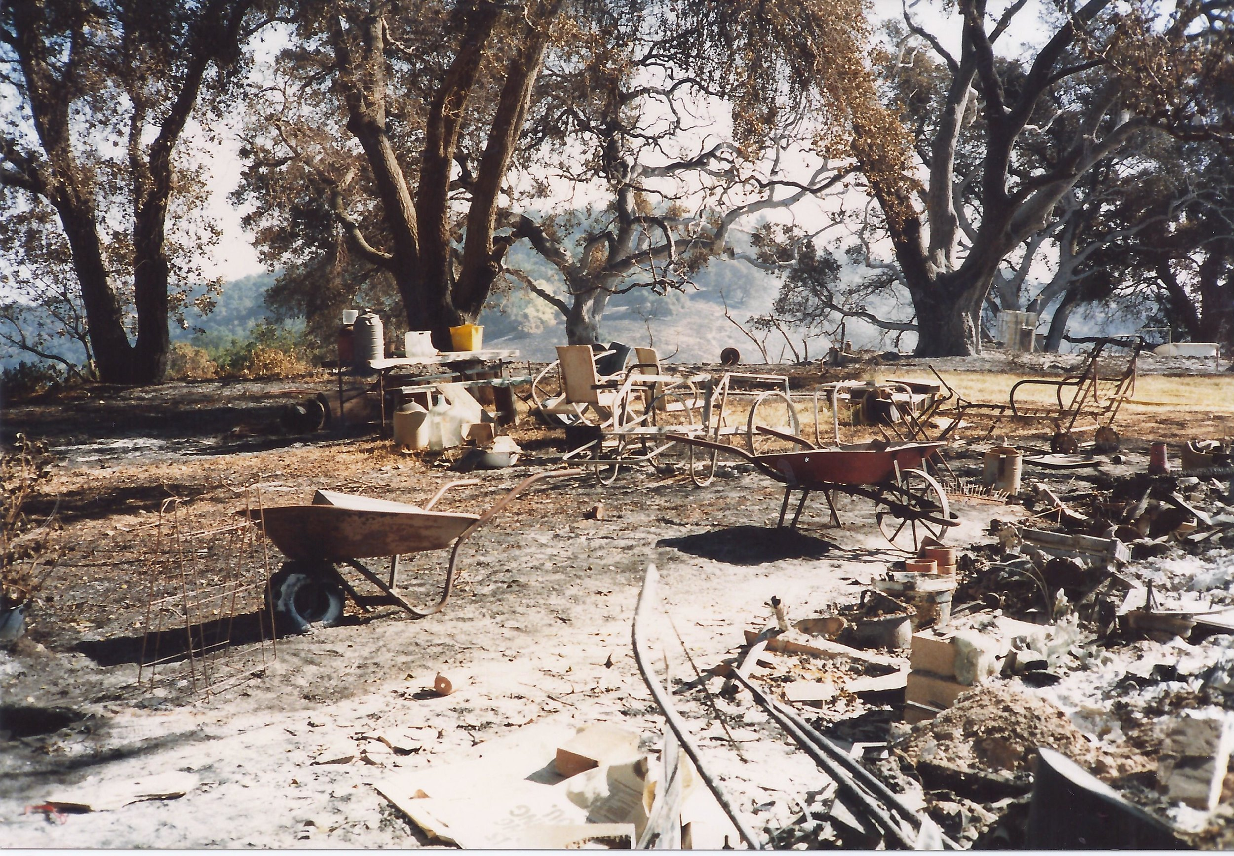 BABA'S WALKWAY is covered with ash and dirt in the days following the 1985 New Life Fire which destroyed all the buildings and machinery on the property. Over time the walkway became more obscured by dirt and weeds. (Photo: Sam Ervin, October 1985)