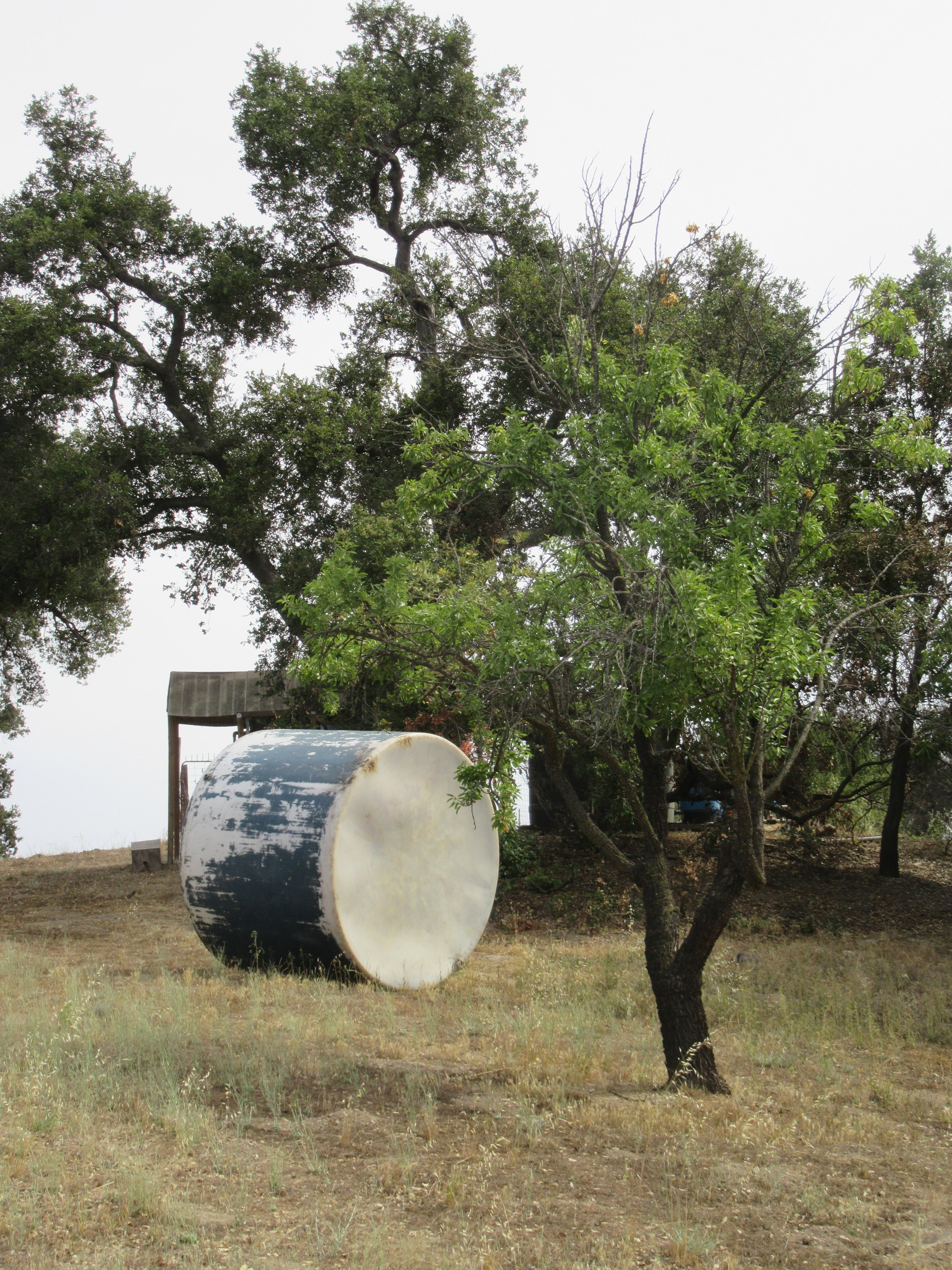 THE OLD agricultural tank waiting to be cut up and disposed of. (Photo: Sam Ervin, July 9, 2018)