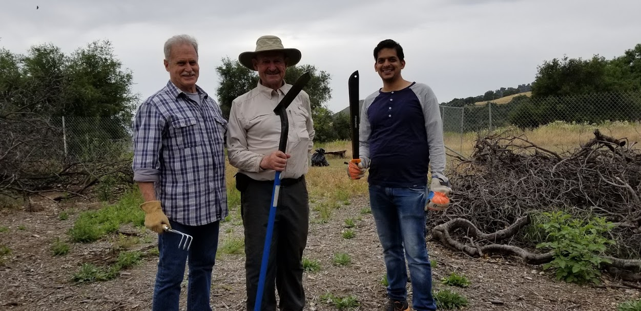 WEEDS & INVASIVE PLANTS are no match for this team. (Left to right) Steve Bostwick, Sam Ervin and Umakanth Umapathy do fire abatement around Baba's Tree at Meher Mount. (Photo: Margaret Magnus, May 18, 2019)