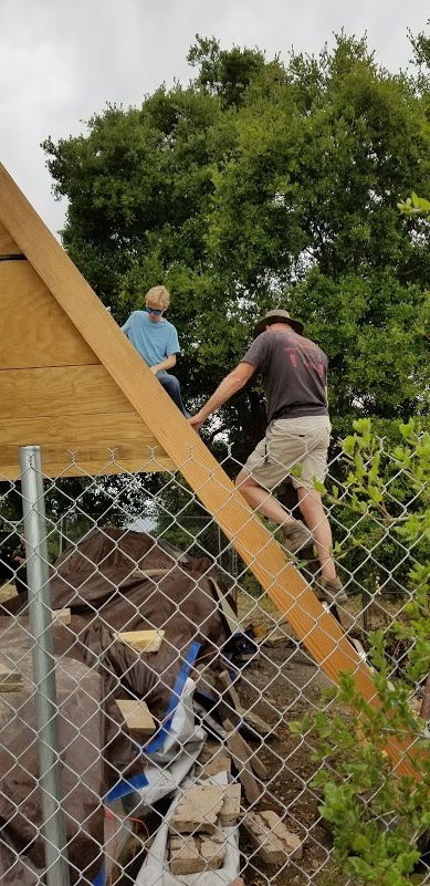 THE FATHER-SON TEAM of James Whedon and his son Ian (in blue) work on building the A-frame structure to protect the harvested and milled wood from Baba's Tree. (Photo: Margaret Magnus, May 28, 2019)