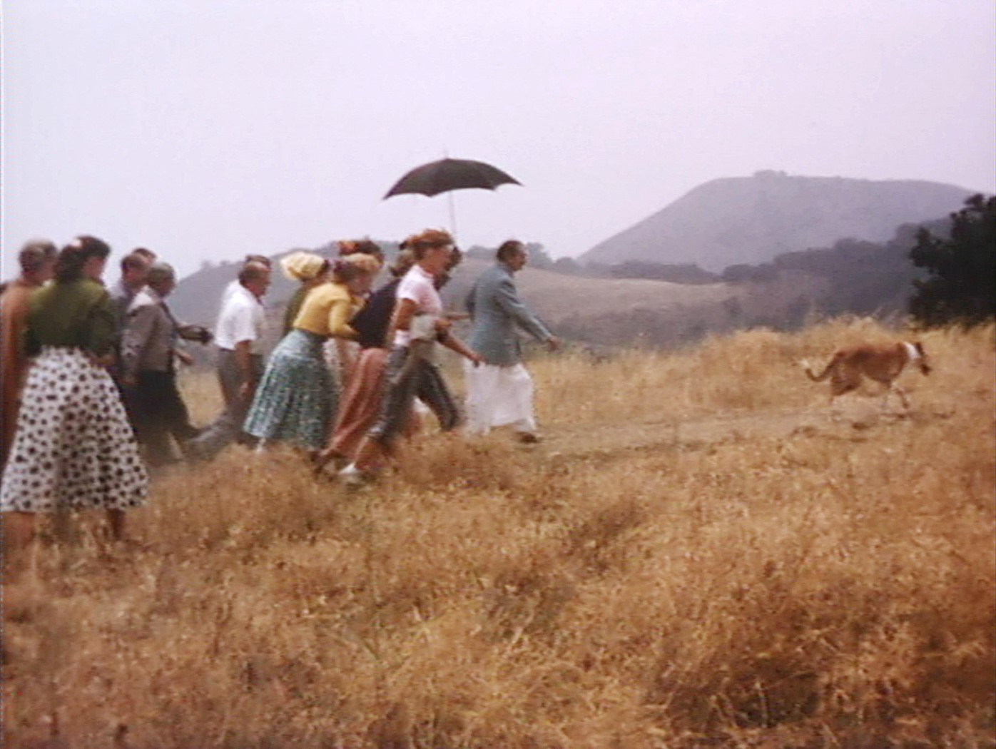 AVATAR MEHER BABA'S FOLLOWERS are hurrying to keep up with Him on a tour of Meher Mount on August 6, 1956. This photograph is a screen capture from the film,   Meher Baba in the USA, 1956   ,  by Charmian Duce Knowles and produced and copyrighted by Sufism Reoriented. (Image: Courtesy David Pastor, Sufism Reoriented)