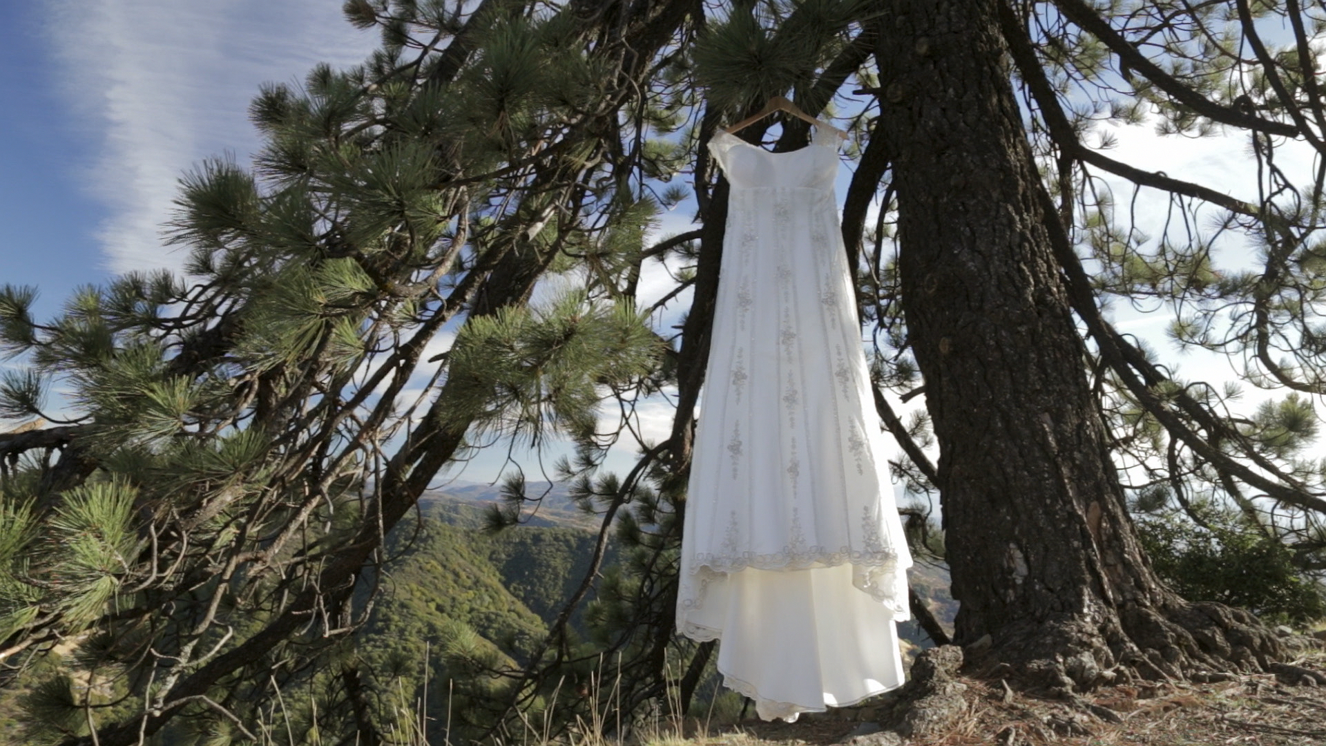 kylemichael-dress.jpg