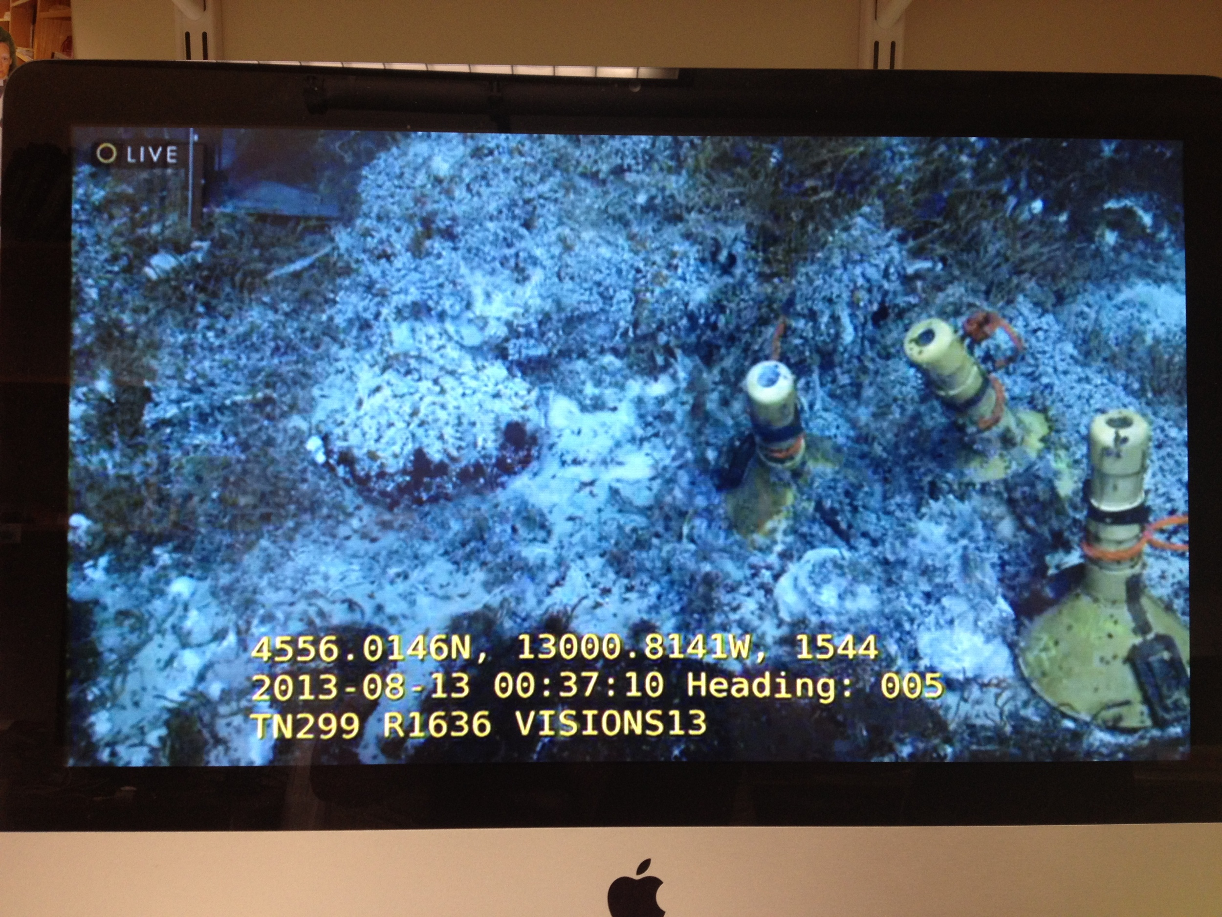 Live streaming video of my experiment at the bottom of the Pacific