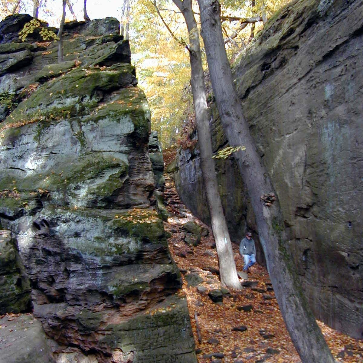 EAST BRANCH ROCKY RIVER GREENWAY PROTECTION PLAN