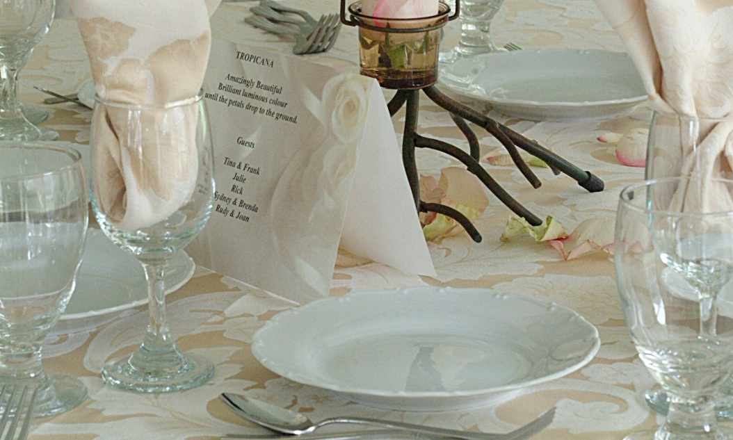 wedding dinner table cropped.jpg
