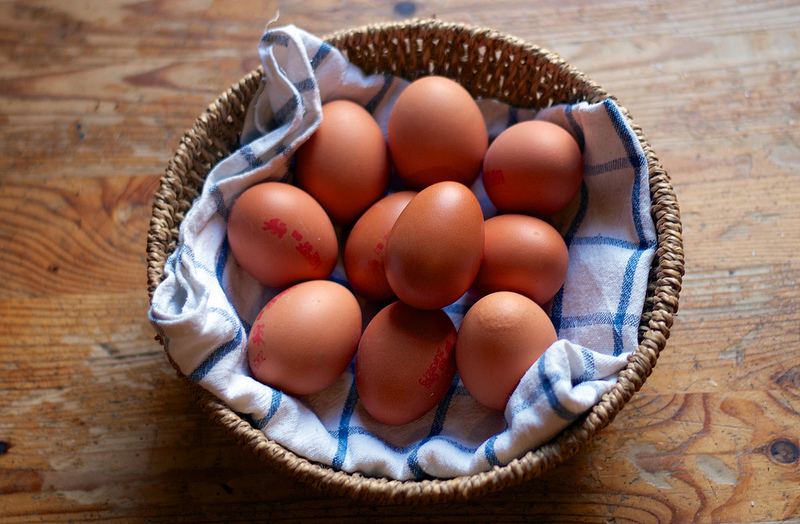 All Your Eggs In One Basket?