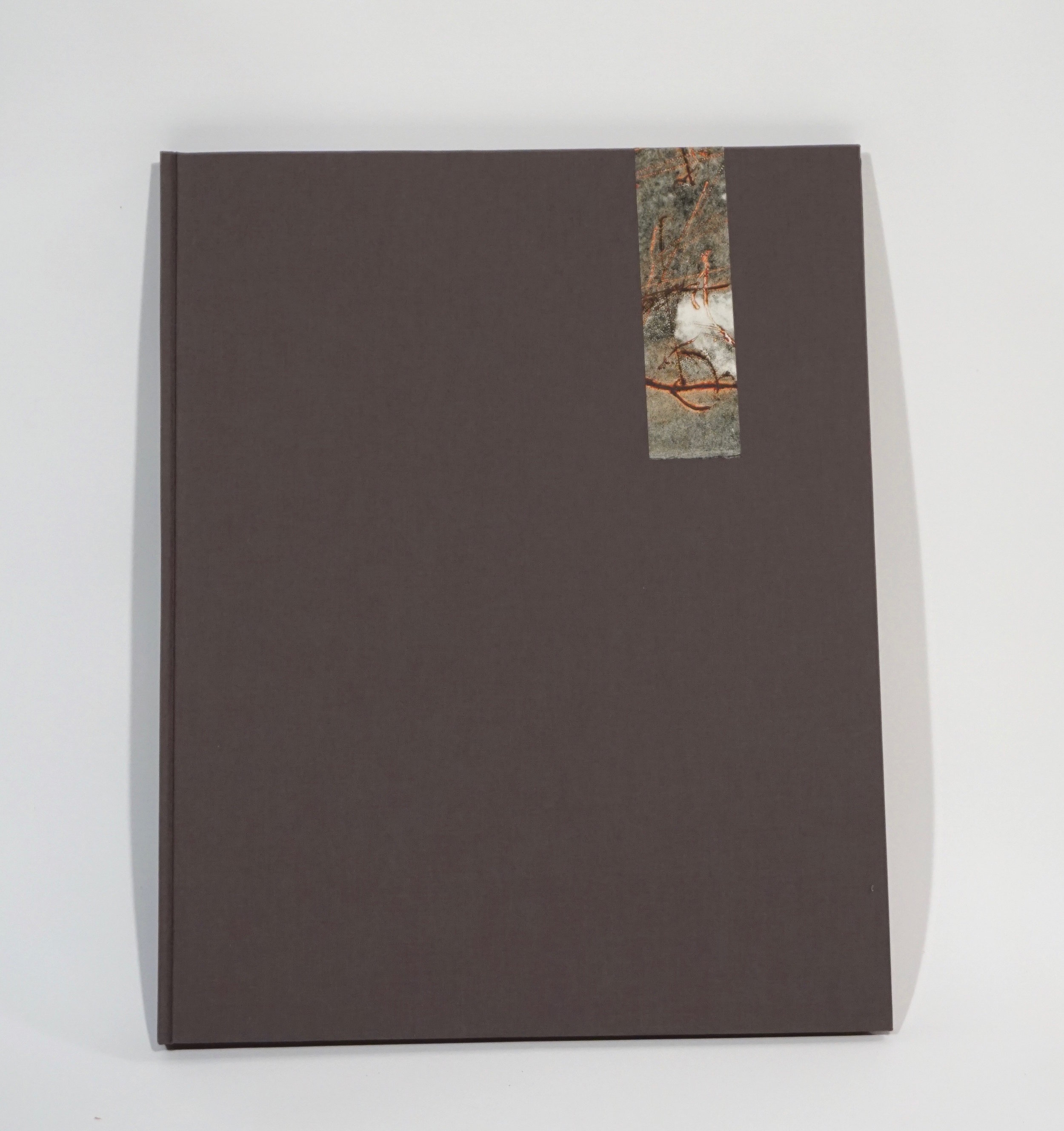 Cover shot of Fog Frac/tured Pangea. Case bound book of monoprints with poetry.