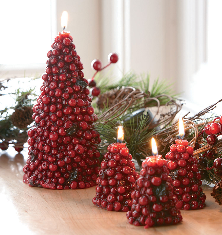 novelty candles: Christmas cranberries