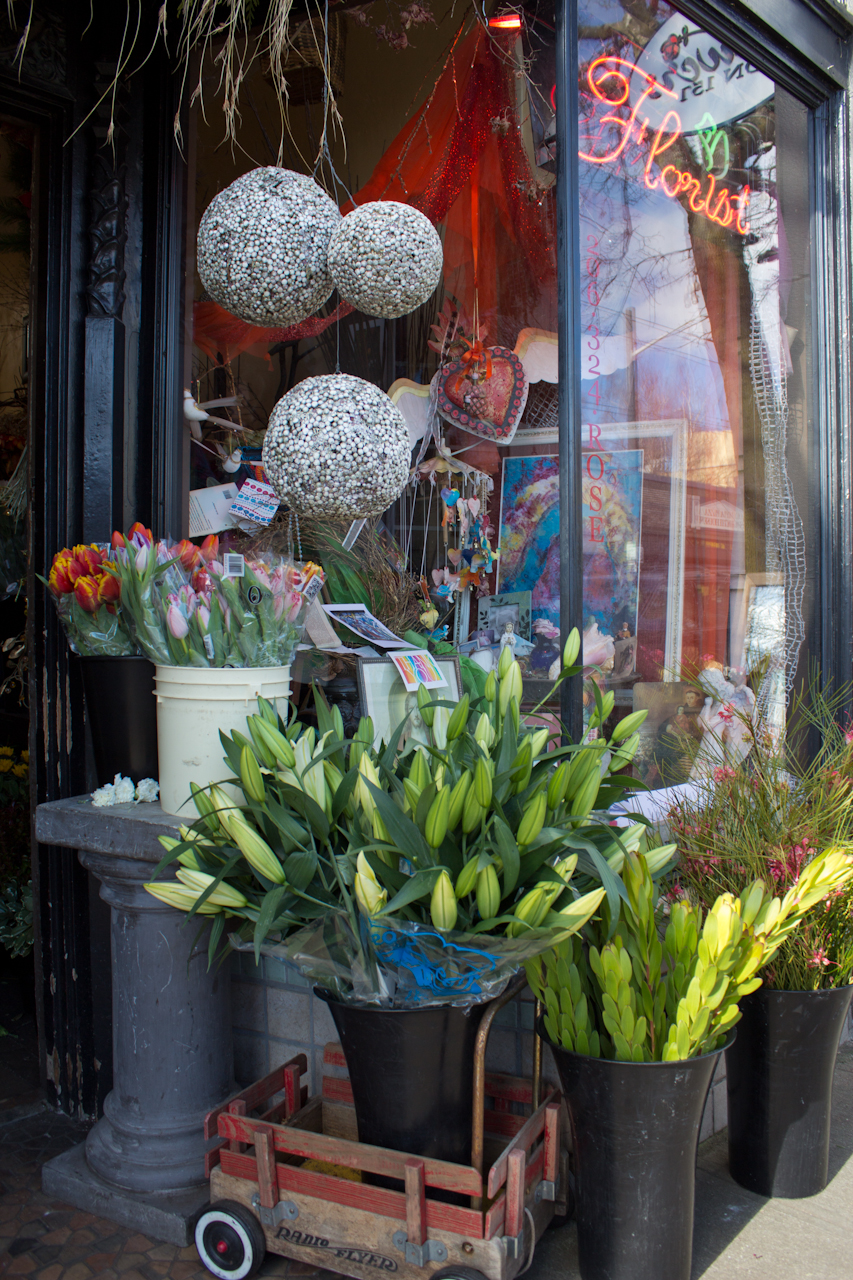 Your Seattle Florist on Capitol Hill