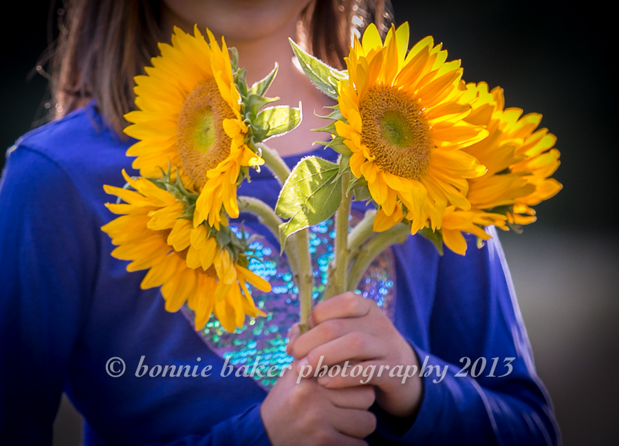 And here's a portrait of the sunny sunflowers themselves.  I love how they look against the girl's cobalt blue shirt (and I love how the sparkly heart shows just behind the stems!).