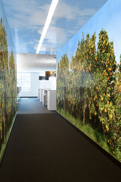 Minute Maid 's portal has a mural of an orange grove.