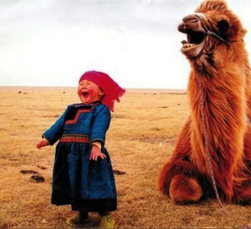 girl-and-laughing-camel-2.jpg