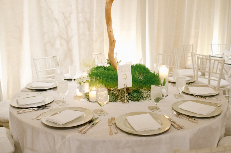 Gallardia OKC Wedding-0030.jpg