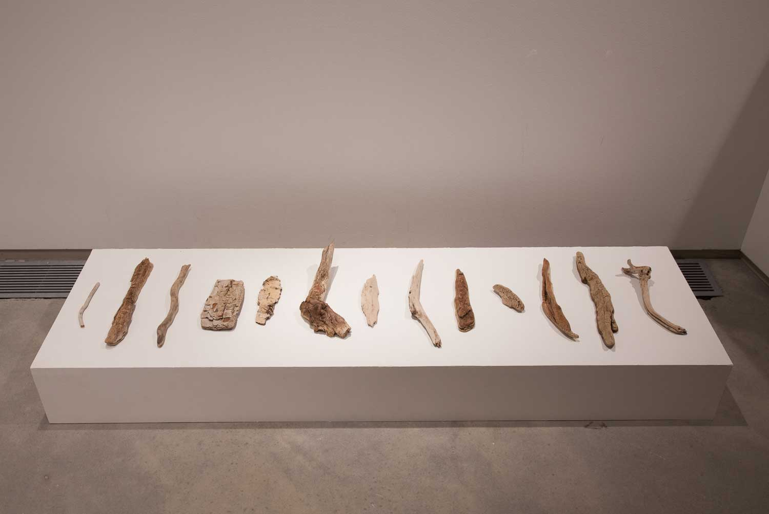 Snake River Driftwood, found objects, dimensions variable