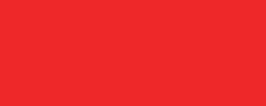 planitswiss logo.png