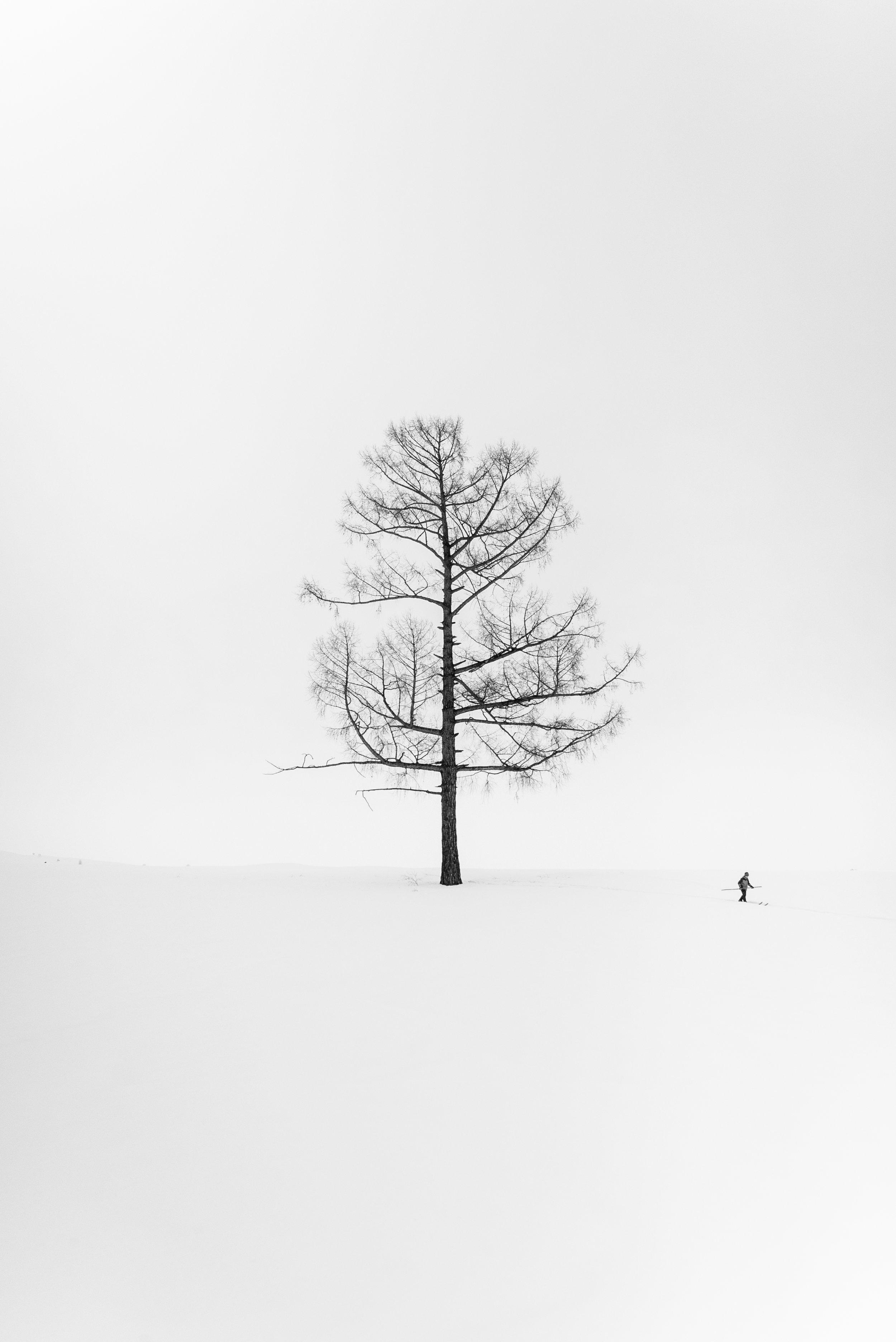 China - A Skier's Journey.jpg