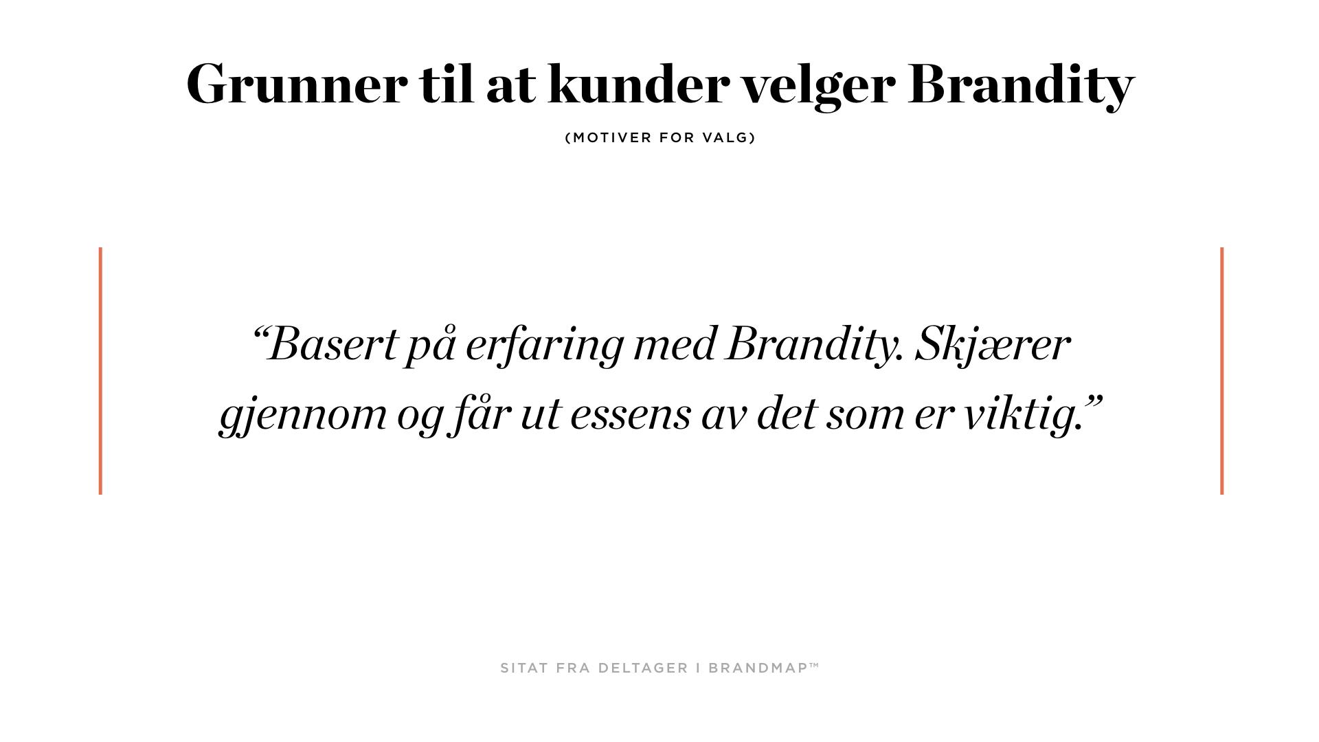 Brandity BrandMap 2018 for Squarespace.002.jpeg
