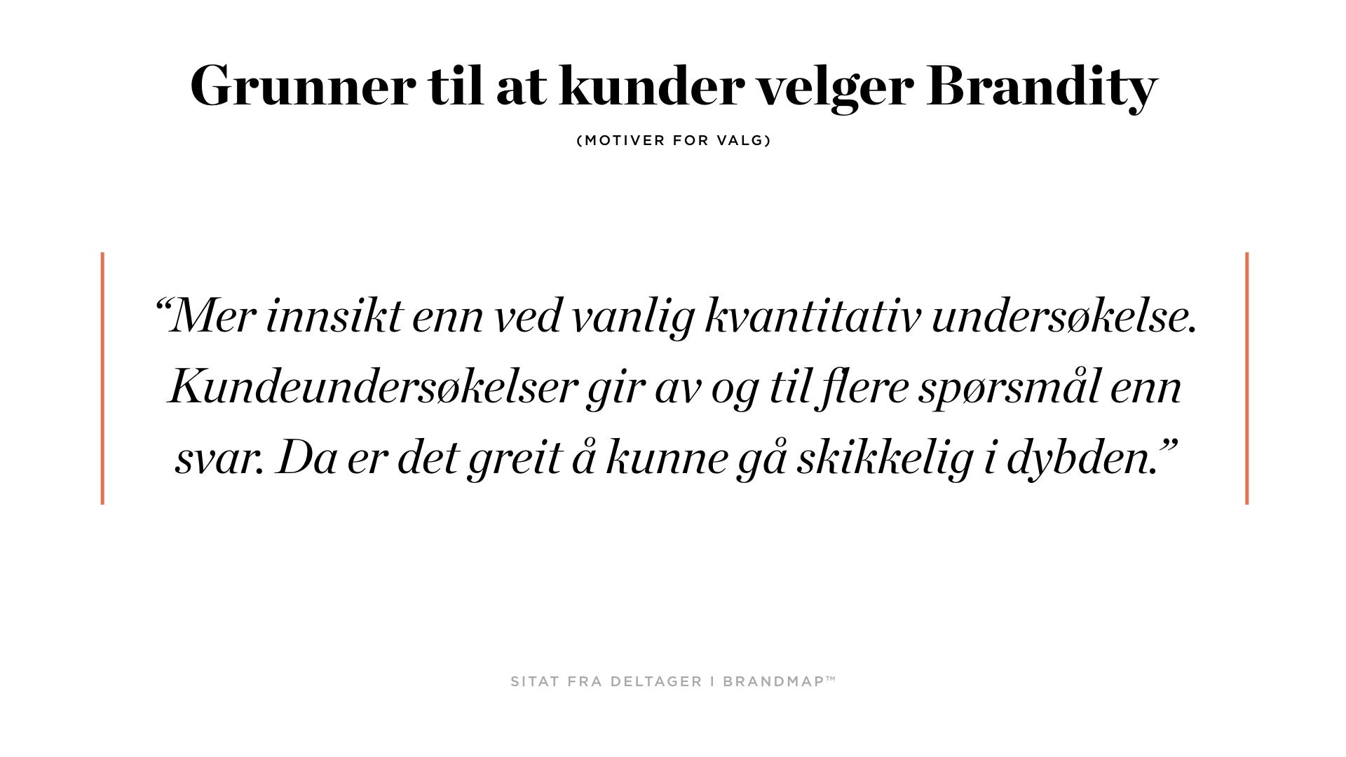 Brandity BrandMap 2018 for Squarespace.004.jpeg