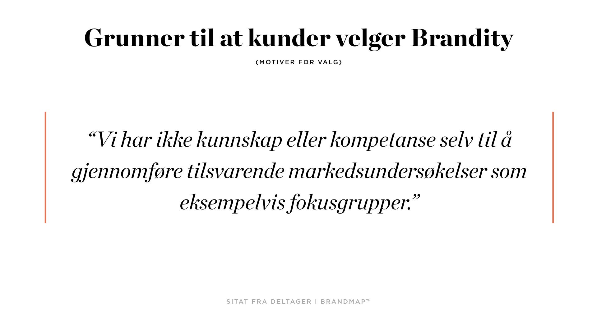 Brandity BrandMap 2018 for Squarespace.005.jpeg