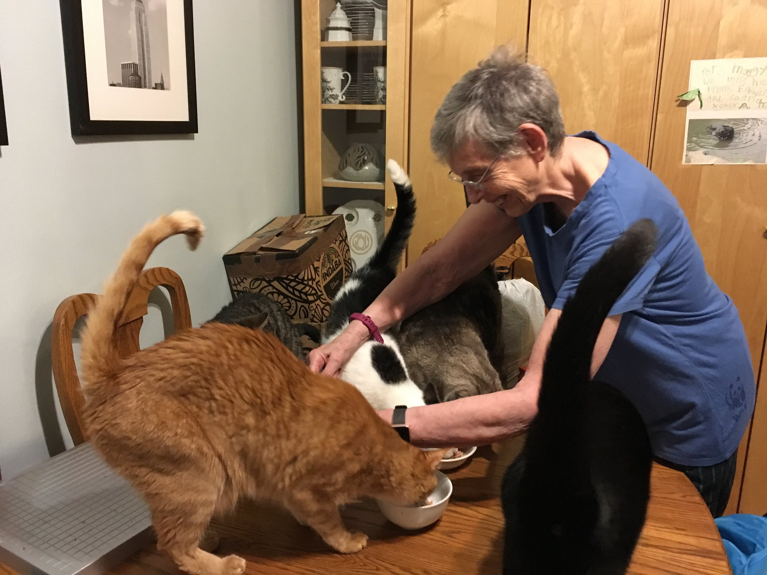 Lee and her cats in 2018. Photo by Gwen Shockey.
