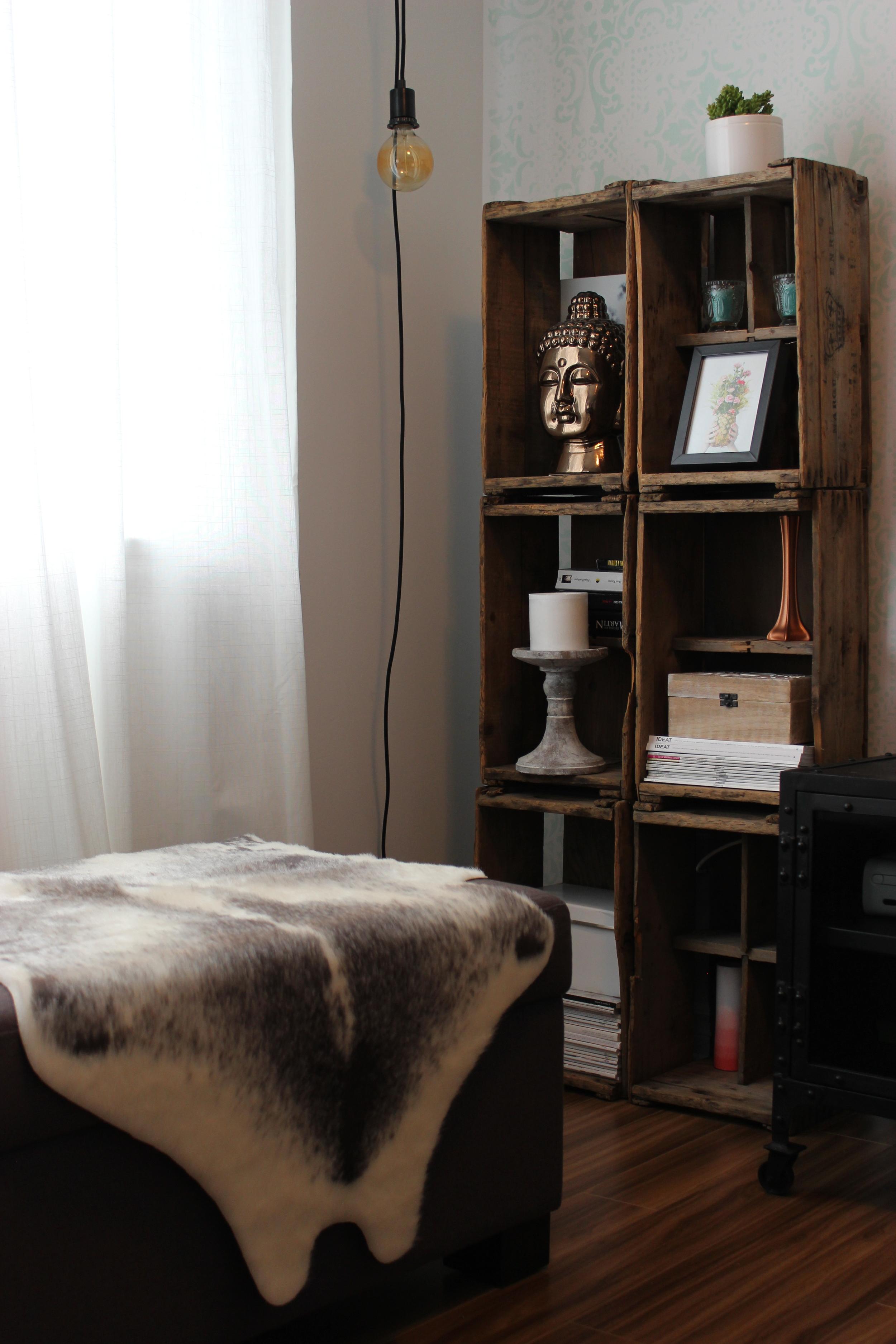 salon meuble 5.JPG