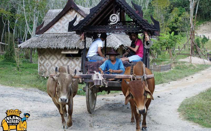 Повозка с буйволами