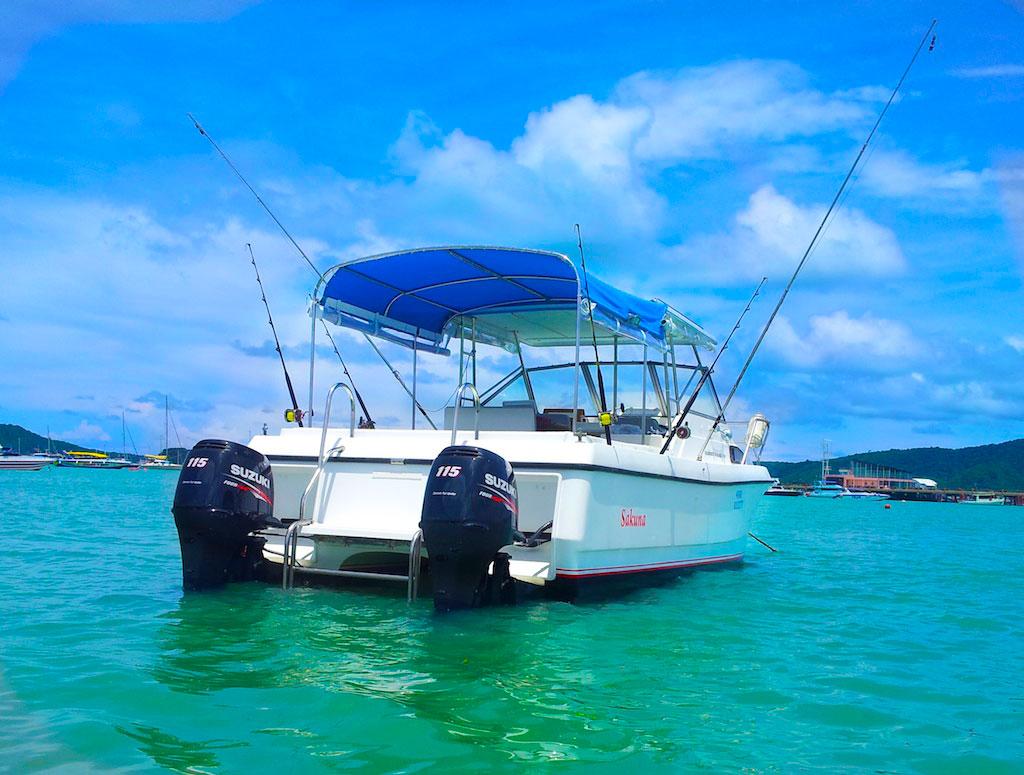 Моторный катамаран Shark Cat 23 фута