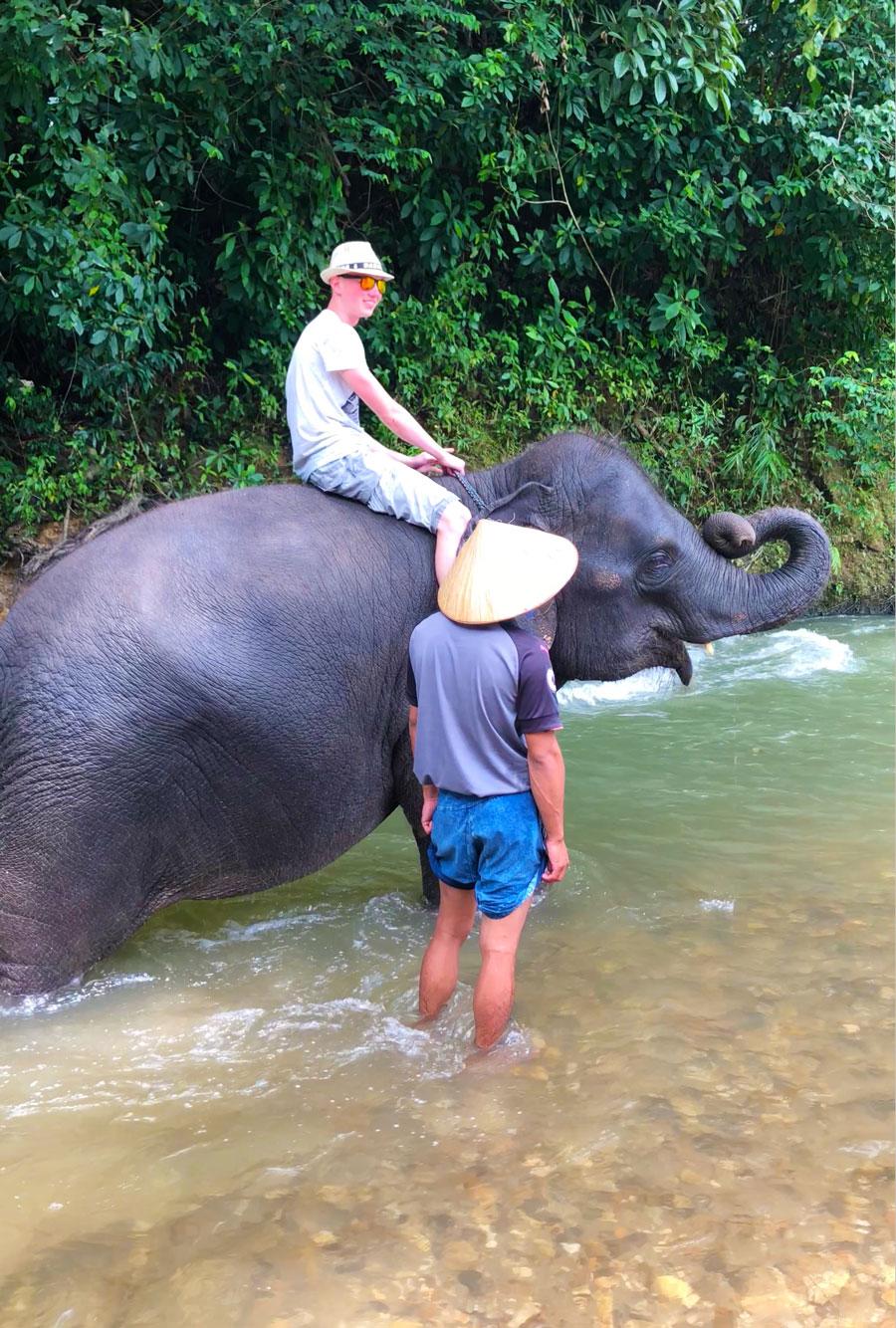 фото со слоником