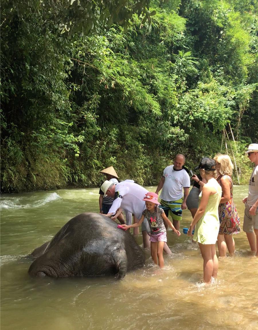 купание слоненка