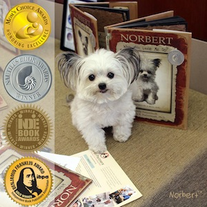 'Norbert: What Can Little Me Do?' a children's picture book & winner of 9 prestigious book awards.
