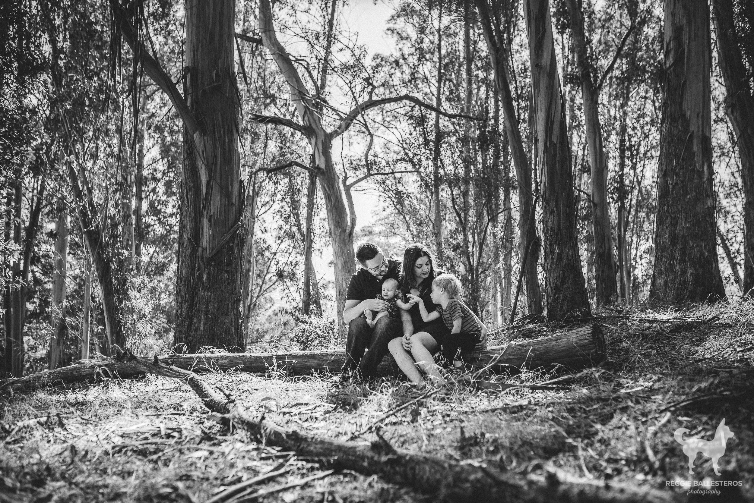 Junipero-Serra-Park-San-Bruno-Family-Photography-027.jpg