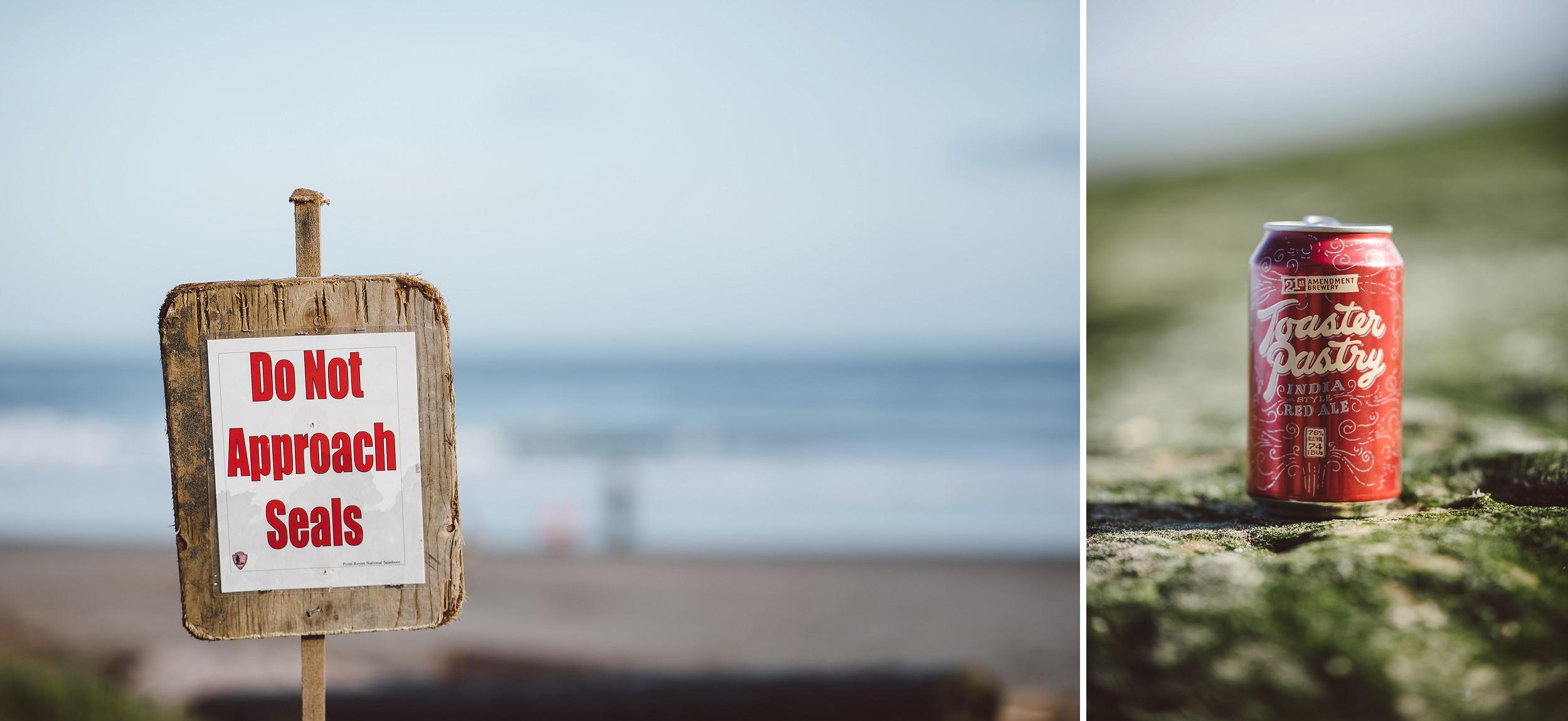 Point-Reyes-Engagement-Photography-002.jpg