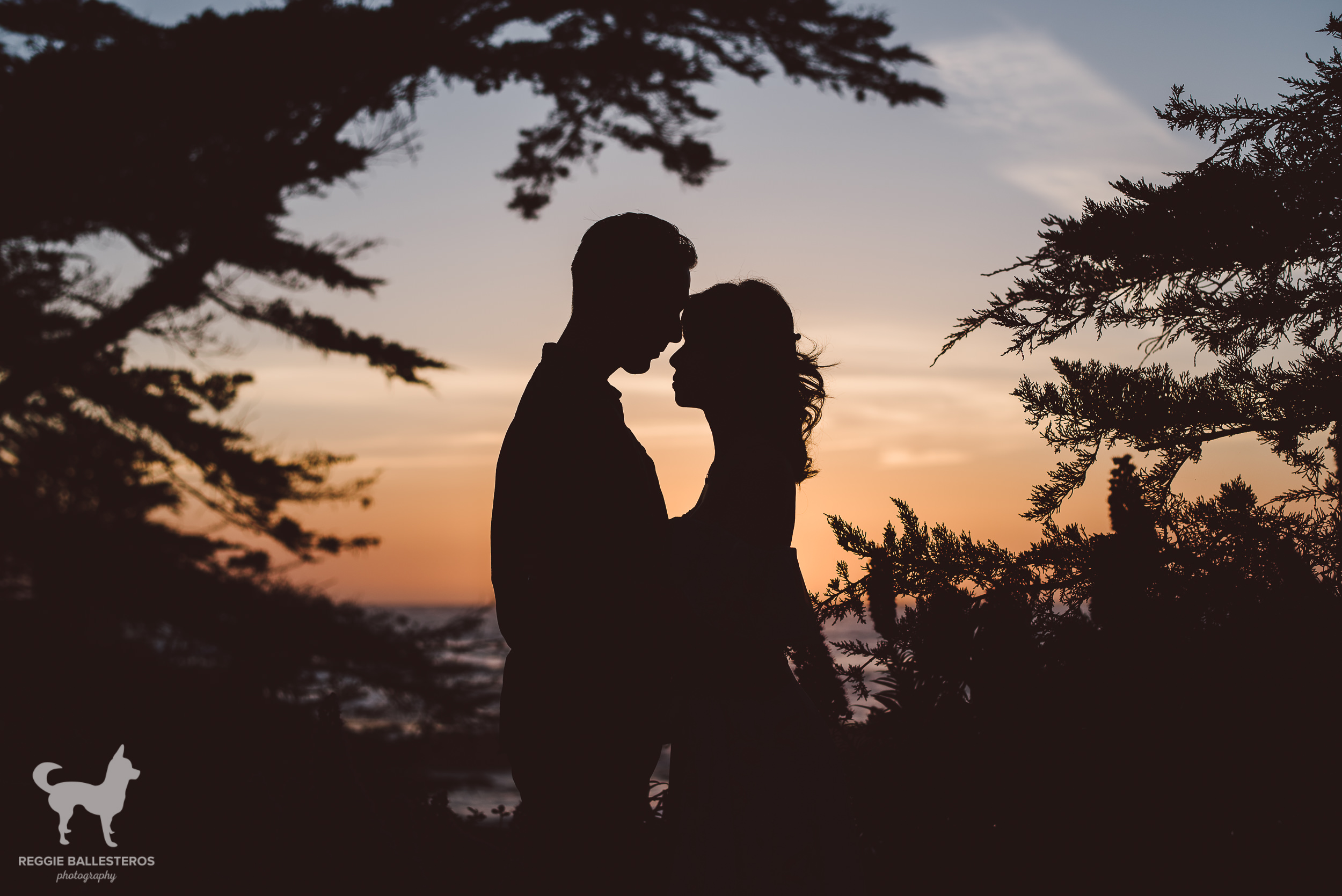 Carmel-by-the-Sea-Engagement-Photography-019.jpg