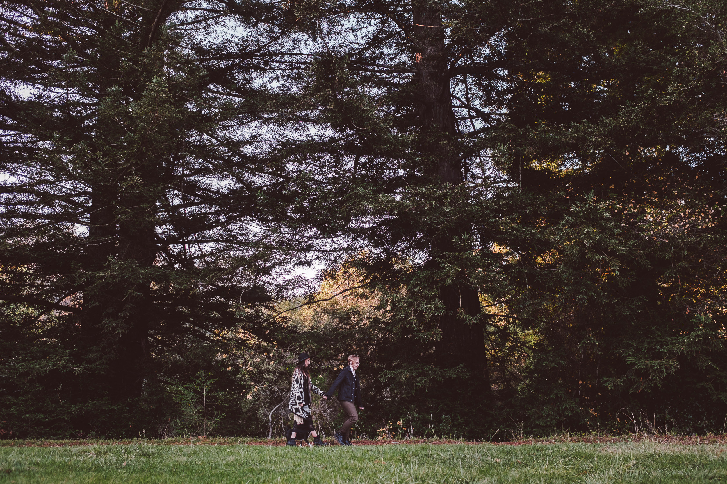 Tilden-Regional-Park-Tattoed-Couple-Engagement-Photography-001.jpg