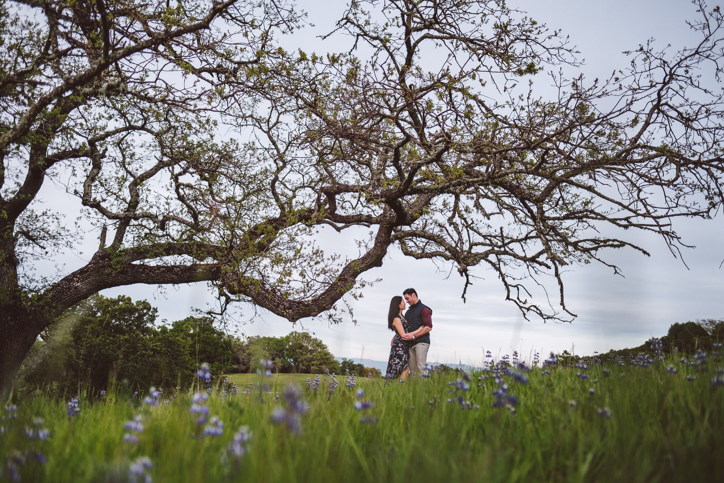 Palo-Alto-Foothills-Park-Engagement-Photography-023.jpg