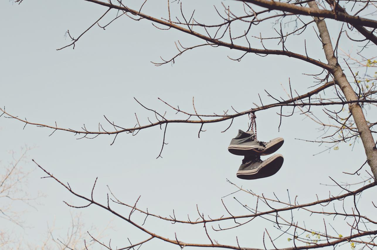 spring20120320_0002.jpg
