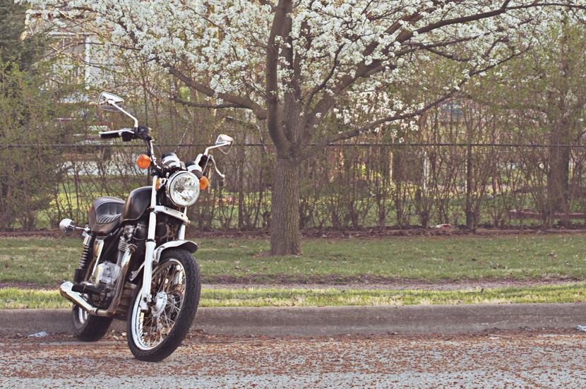 spring20120320_0009.jpg