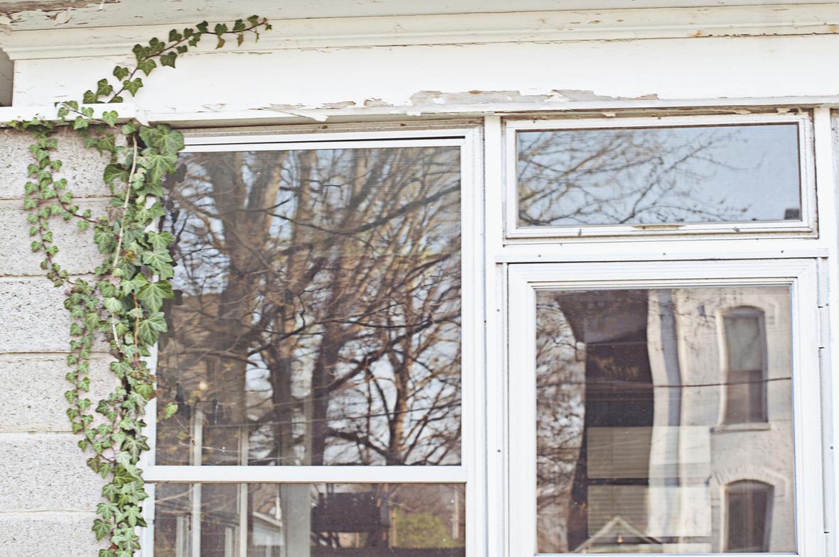 spring20120320_0004.jpg