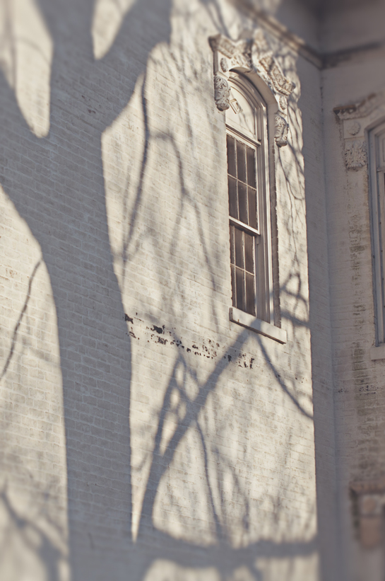 spring20120320_0003.jpg