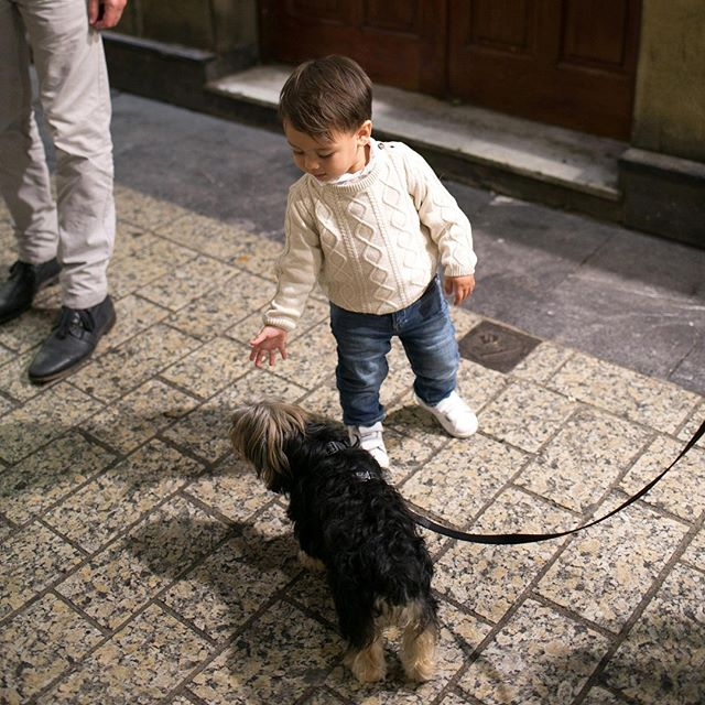 The little one LOVES dogs! #barnabymaxwell #travelwithML