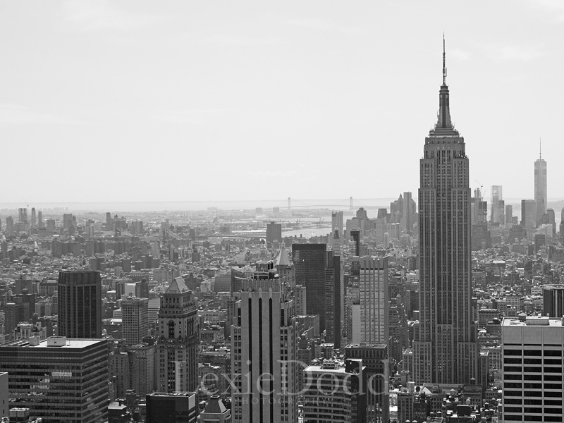 Empire State Building viewed from 'Top of the Rock' (Rockefeller Center)
