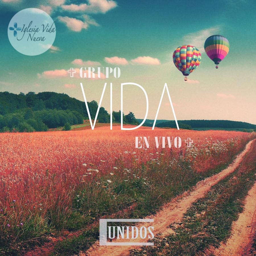 Vida Cover.jpg