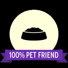 A - Common - 100 Pet Friend.png