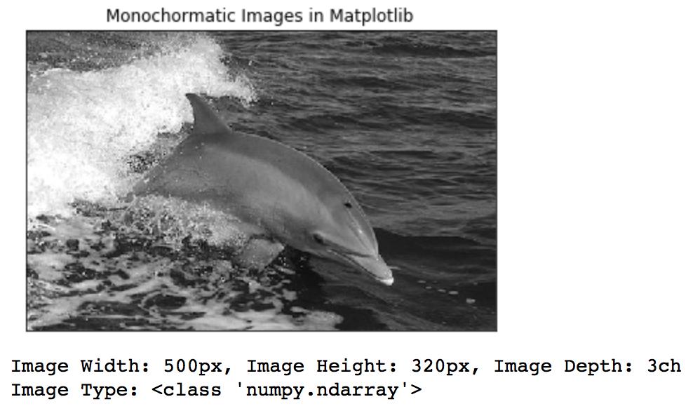 dolphin-matplotlib.png